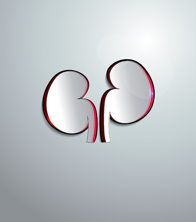 Kidneys of the paper abstract design, cut out Vector