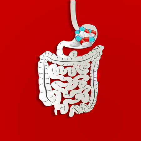 Stomach and pills inside, bright red background Vector