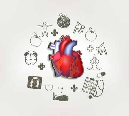 Healthy heart at the middle hand drawn tips around . Healthy food, fitness, no stress, healthy weight, doctor visits, good sleep leads to healthy heart. Vector