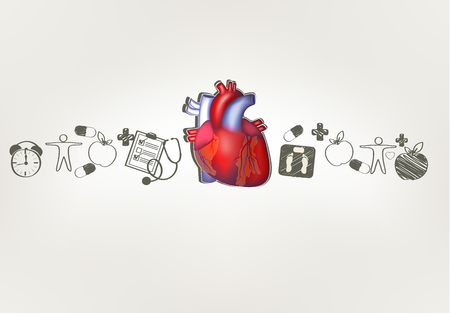 Heart anatomy with hand drawn health care tips. Healthy food, fitness, healthy weight, doctor visits, good sleep leads to healthy heart. Vector
