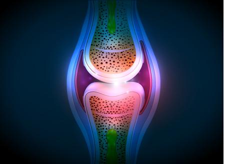 Synovial anatomie conjointe conception abstraite lumineux. Saine illustration détaillée conjointe. Banque d'images - 31760255