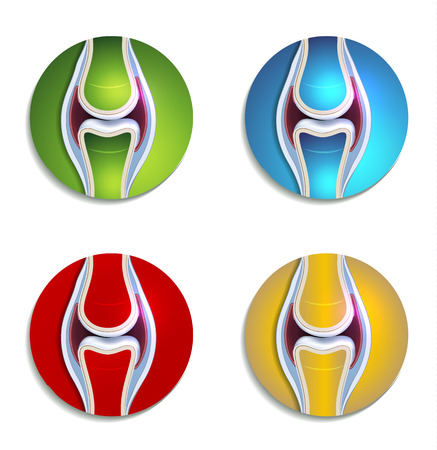 Abstract colorful joint anatomy icons set Vector
