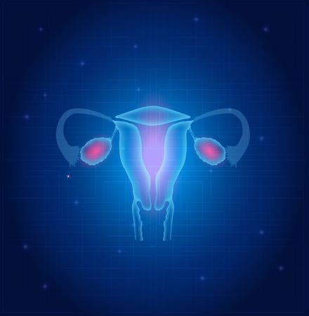 Baarmoeder en eierstokken anatomie blauwe achtergrond Stock Illustratie