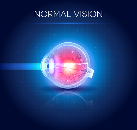 Normal eye vision. Bright blue background