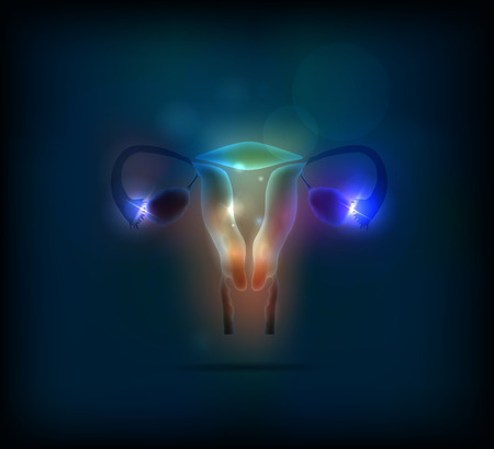 woman vagina: Colorful Female uterus abstract background