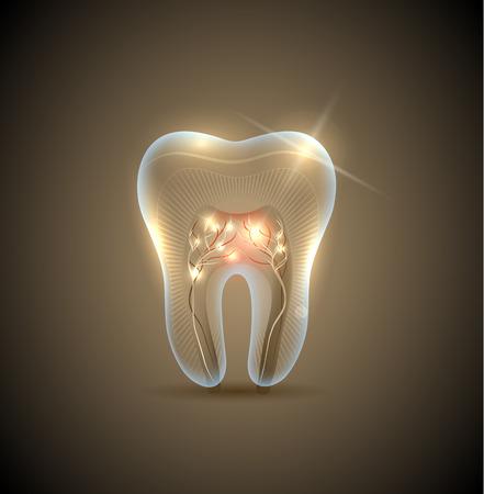 dientes con caries: Hermosa diente de oro transparente con raíces ilustración. Dientes sanos símbolo cuidado.