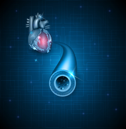 heart muscle cells: Human artery and heart abstract blue background Illustration
