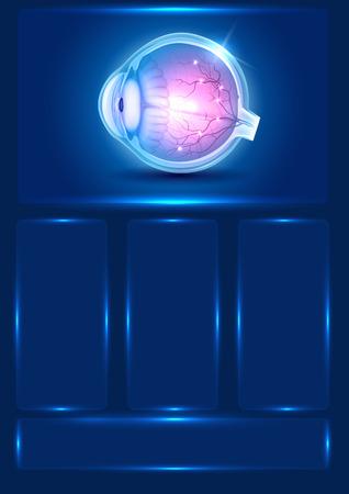 eye sight: Human eye anatomy beautiful blue template Illustration
