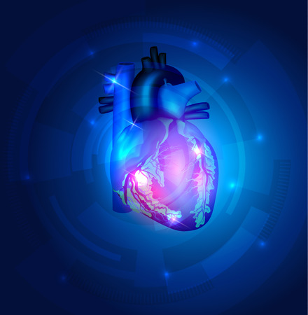 Heart anatomy on a beautiful blue technology background