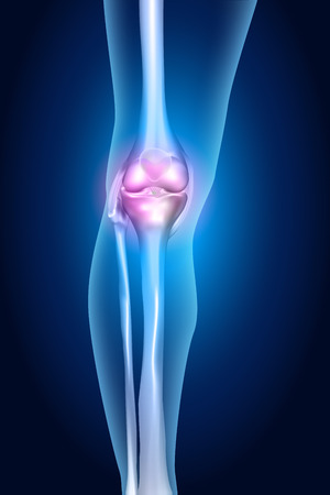 human bones: Human leg, knee anatomy, bright blue design
