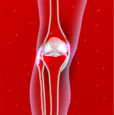 extremity: Normal knee joint abstract red background, leg silhouette