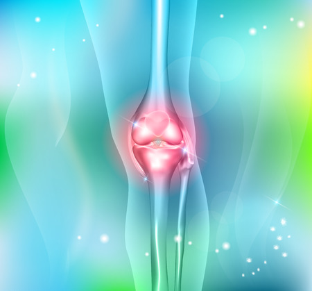 Human leg knee joint anatomy on a beautiful light blue background