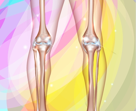 lower limb: Healthy human legs knee joints on a colorful background