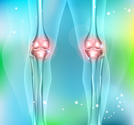 lower limb: Healthy human leg knee joints on a beautiful light blue background Illustration