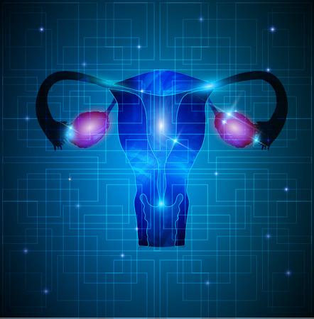 ovary: �tero y ovarios fondo abstracto Vectores