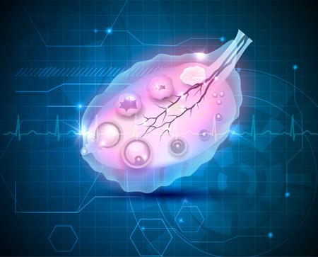 ovaire: Abstrait ovaire Femme bleu, l'ovulation intérieur de l'ovaire Illustration