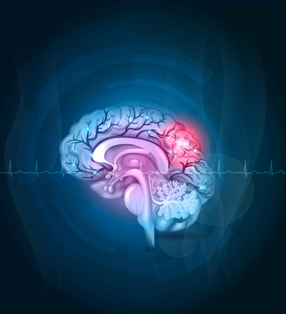 Brain cross section, arteries detailed illustration abstract blue background. Stroke abstract treatment concept, cardiogram at the front Illustration