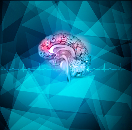 cerebral artery: Human brain treatment abstract light blue background