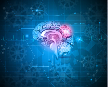 Human brain abstract light blue background with cardiogram, gears and molecules Illustration