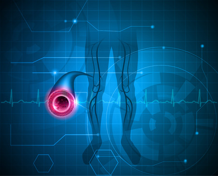 lower limb: Healthy leg artery on a abstract blue background
