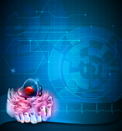 endoplasmic: Cell Nucleus blue background detailed anatomy blue background