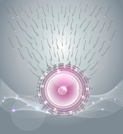 sperm: Female ovum fertilization with male sperm, beautiful abstract design Illustration