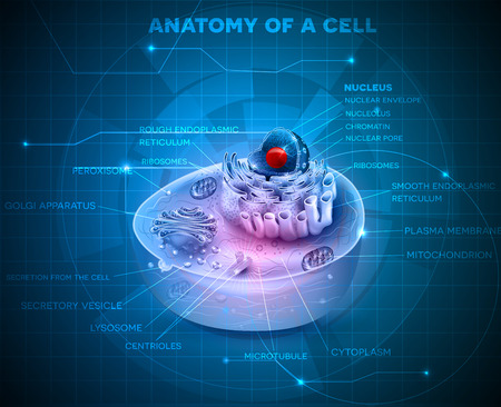 Cell anatomy cross section abstract blue technology background Stock Illustratie