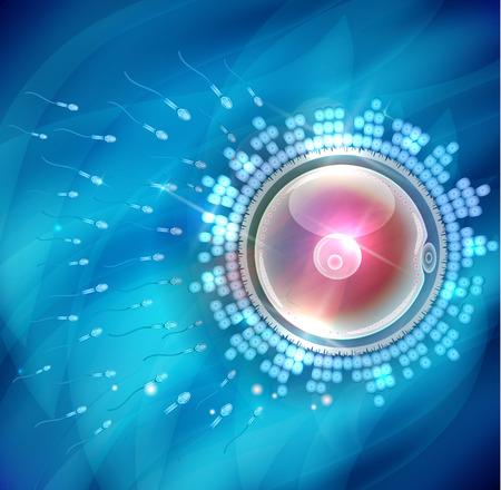 embryology: Ovum fertilization beautiful abstract background