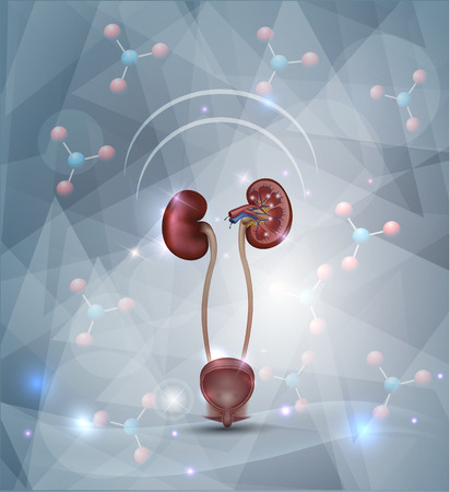 Kidney protection abstract design, abstract background with molecules, abstract triangle shapes and light shades.