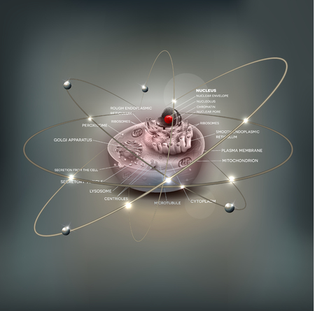 Cell anatomy detailed illustration, abstract atom design, beautiful grey mesh background