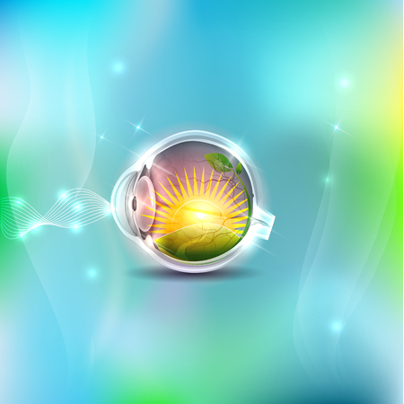추상 눈 해부학, 인간의 시력입니다. 태양과 눈 안쪽의 들판. 파란색 메쉬 배경 조명입니다.