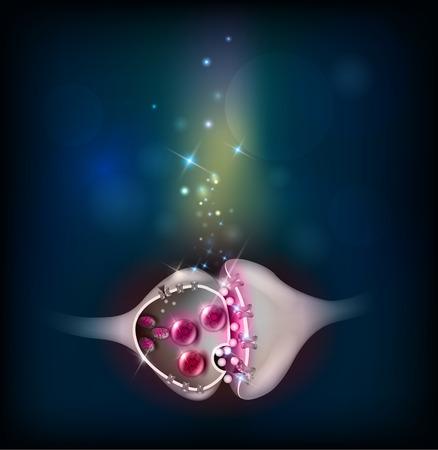 neurona: Sinapsis, hermosa colorida ilustración abstracta del fondo. Neurona pasa la señal a otra neurona.