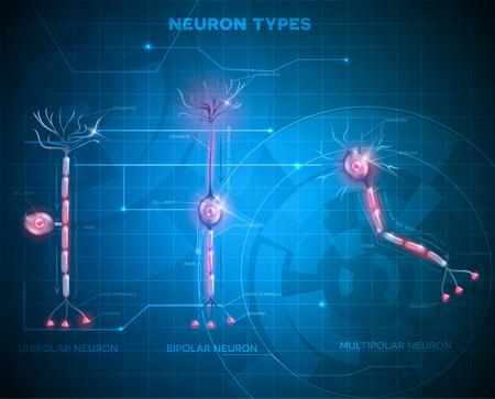 typy neuronów, komórek nerwowych, która jest główną częścią systemu nerwowego. Abstrakcyjna niebieskie tło technologii