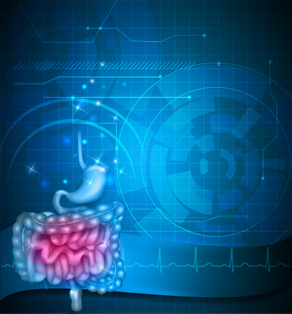 Gastrointestinal tract blue background. Stomach, small intestine and colon. Beautiful bright illustration.