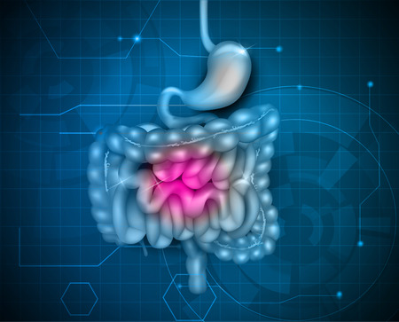 Gastrointestinal tract. Stomach, small intestine and colon, abstract blue technology background. Beautiful bright illustration.
