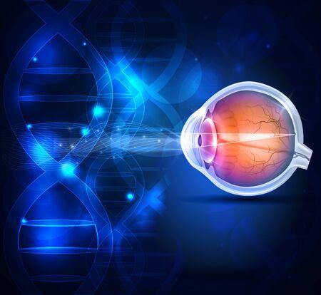 Anatomia zdrowego oka abstrakcyjne tło naukowe Ilustracje wektorowe