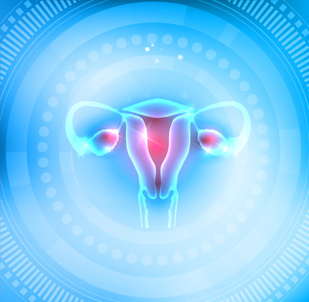 Female Uterus and ovaries on a light blue abstract round circle background Vectores