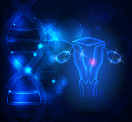 Female reproductive organs, ovaries and uterus on a blue scientific background with DNA chains