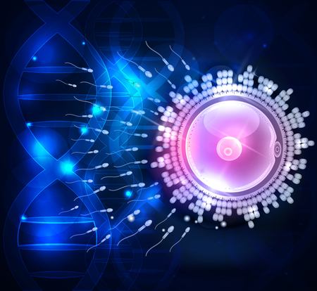 fertilization: Ovum fertilization beautiful design on a scientific DNA chain background Illustration