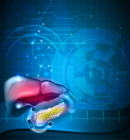 Gastrointestinal tract treatment abstract design, liver, stomach and other surrounding organs, normal cardiogram at the background