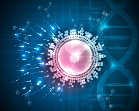 fertilization: Ovum fertilization drawing, beautiful design on a blue DNA scientific background