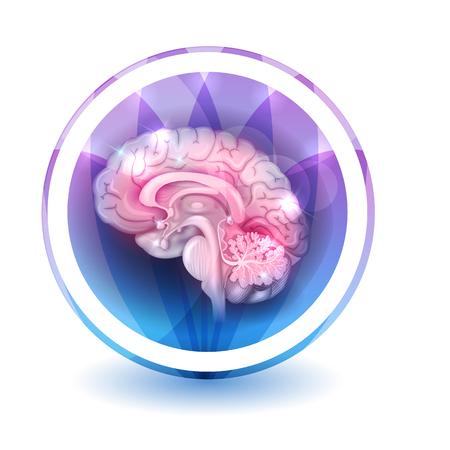 silhouette fleur: Cerveau traitement signe, forme ronde colorés pétales superposition de fleurs à l'arrière-plan