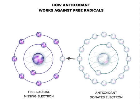 How antioxidant works against free radicals. Antioxidant donates missing electron to Free radical, now all electrons are paired.