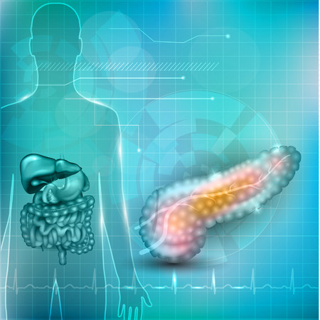 Pancreas anatomy and treatment concept, human silhouette with internal organs, gallbladder, intestine, stomach and spleen on a beautiful abstract background with normal cardiogram at the bottom. Illustration