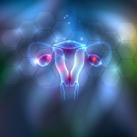 Female uterus abstract background