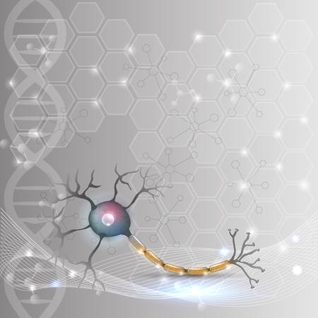 Anatomie des cellules nerveuses illustration détaillée sur un fond d'ADN scientifique abstrait