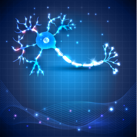 Anatomie des cellules nerveuses illustration détaillée sur un fond bleu abstrait scientifique