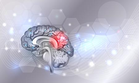 De menselijke hersenen problemen lichtgrijze gloeiende achtergrond, mooie heldere illustratie gedetailleerde anatomie