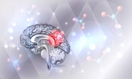Cerebro humano abstracto gris claro fondo abstracto con resplandor