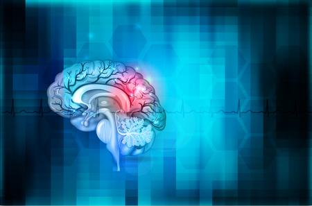 Abstrakter blauer Hintergrund des menschlichen Gehirns, ausführliche Anatomie der schönen bunten Illustration